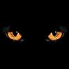 """Пересекая черту"" - симфония Виктора Аргонова - последнее сообщение от Ари"